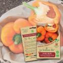POIVRON California Wonder orange Bio