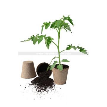 Pack de 26 Pots biodégradables 6 cm