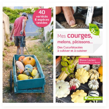 Mes courges, melons, patissons