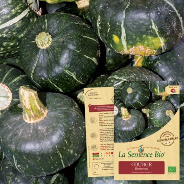 COURGE Buttercup Bio