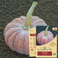 COURGE Futsu Black Bio