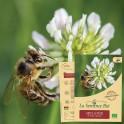 MELANGE de fleurs abeilles Bio