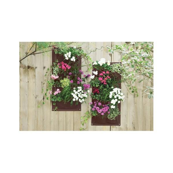 verti plant le jardin suspendu lot de 2. Black Bedroom Furniture Sets. Home Design Ideas