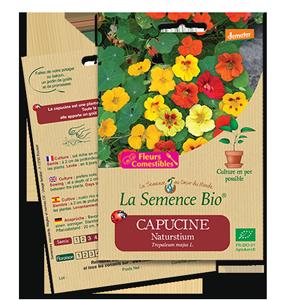 Capucine semences bio La Semence Bio