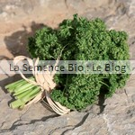 semence aromatiques bio - La Semence Bio - potager
