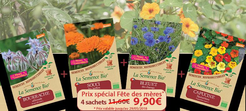 fleurs comestibles - semence bio - jardin potager