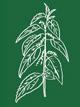 ferme semencière -préparation pour compost biodynamique