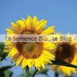 Tournesol géant à grandes fleurs semences bio potager