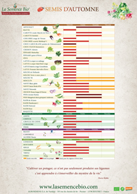 calendrier semis bio automne