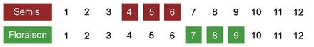calendrier semis delphnium bio