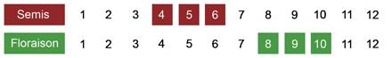 calendrier semis rudbeckie bio