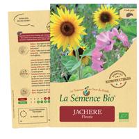 graines jachere fleurie bio - LA semence bio